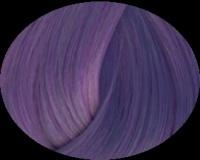 Barva na vlasy DIRECTIONS wisteria